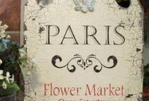 Flower shops / by Lourdes Martin