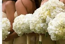 Wedding Flower, Design, & Overall Style Ideas / by Rachel Lewis