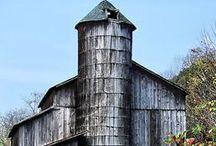 Barns. / by Diann Crossman