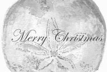 Coastal Christmas / by Flower Lady