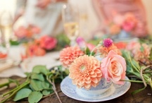 Cute party ideas / by Nicole Arena