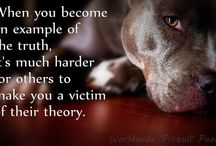 Pit Bulls / by Becky Mosow