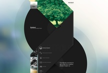 Web Design / by Shayne Walker