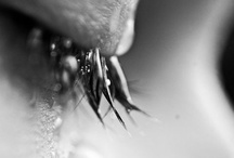 Regrets / by Dan Sackheim