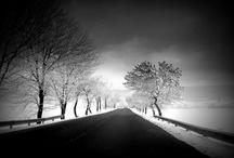 Vanishing Point / by Dan Sackheim