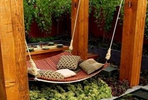 Yard Ideas/Gardening / by Lindsey Harvey