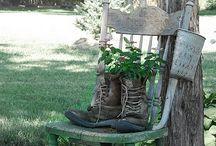 Outdoors / by Lynn Randolph