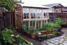 Garden ~ Greenhouses / All about greenhouses / by Organic Gardens Network™
