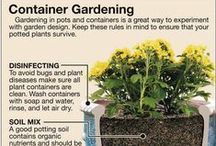 Garden ~ Containers / Container Gardening How-To's / by Organic Gardens Network™