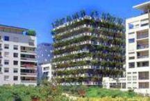 Garden ~ Vertical / Vertical Gardening / by Organic Gardens Network™