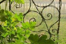 Garden ~ Arbors & Trellises / Garden Arbors & Trellises / by Organic Gardens Network™