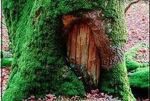 Tree Houses / by Organic Gardens Network™