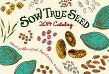 Garden ~ Seed Catalogs / by Organic Gardens Network™