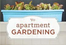 Garden ~ Books / by Organic Gardens Network™