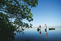 Fishing / Saltwater, freshwater, deep sea or fly, Fort Myers has great opportunities for fishing.  / by The Beaches of Fort Myers & Sanibel Florida