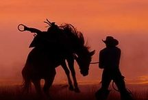 Cowboys & Horses / by Deb Teaters
