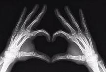 X-Ray / by Jennifer Faucett