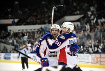 Best Hugs of 2012-13 Season / by Norfolk Admirals