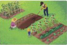 Garden / by Suzanne Martinez-Gardner