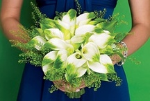 "Wedding Bouquets / by Heather ""Mandollyn"""