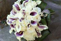 Wedding Ideas / by Shellie Winters