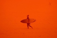 A CeRTaiN ShaDe oF OraNGe / by Angie Spaulding