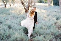 Wedding / by Tara Bellusci