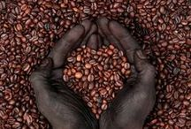 Fair Trade Coffee / by Ten Thousand Villages Canada