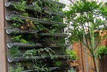 Indoor Garden Inspiration / Ideas for the West Englewood Frick Center interior garden space. / by Vera Videnovich
