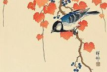 Mandarin Chinese / Mandarin Chinese language learning / by EuroTalk