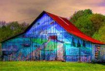 Barns / by Charles Potter