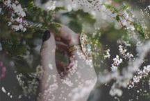 Photography / by mirdinara