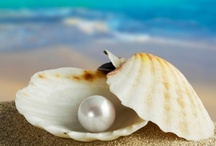 Oysters and Pearls / Passionate for Pearls *song title: Jimmy Buffett* / by RondaKay RHIT