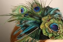 Peacock  / by Azure Elizabeth