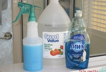 Cleaning Tips / by Debbie Sheets
