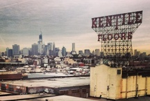 in the slope / my very own pictures of my neighborhood: park slope, brooklyn / by Jenn Newman