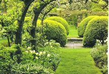 Gardens & Green Space / by Jenika's Lens