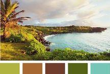 Colors / by Erika Jones