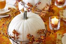 fall. fall. / by Maryjeanne Gilbert
