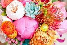 Flowers / by Michelle / Rosy Blu