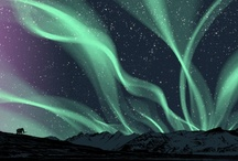 Auroras / by Sylvia Rose-Johnson