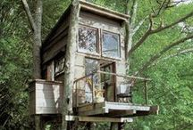 Treehouses / by Tammy Donroe
