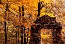 Autumn / by Tony Kris