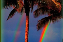 Somewhere Over The Rainbow / by Karen Bedson/Westerberg