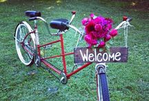 Tour de Floral... / Bicycles gone colorful on display / by Patti Stevenson