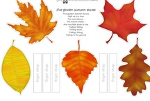 Autumn Activities / Fall begins September 22. Celebrate autumn in your classroom with these fun and educational activities. #autumn #fall #teaching / by TeacherVision