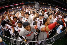 2013 Sugar Bowl Champions / by UofL Admissions