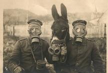WW2 Germany. / by Yellow Marzipan.