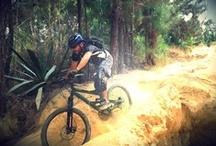Mountain Biking / Cycling / by Wilmer Villalobos