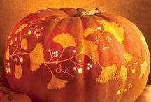 Fall/Halloween / by Dana Quigley